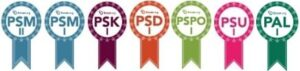 Pedaran-Badges